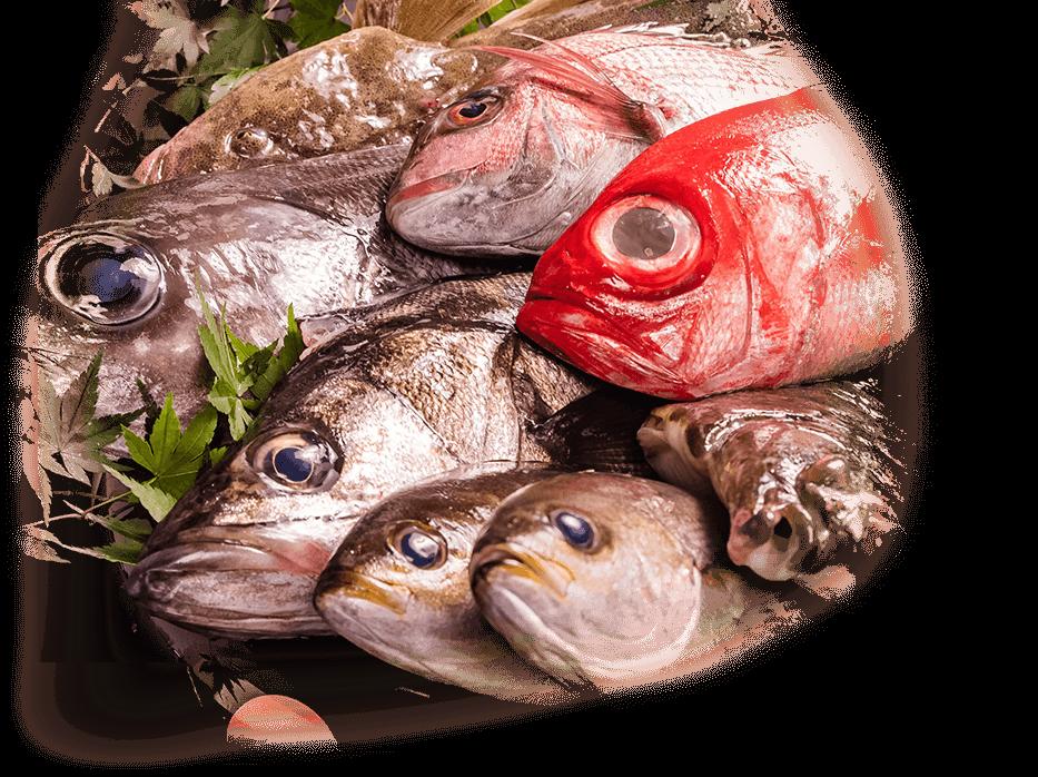 鮮美透涼な魚がよりどりみどり 仁笑門